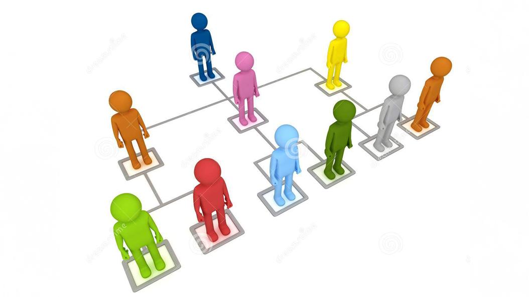 organization-structure-27019663